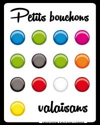 pbv-logo-rvb.png